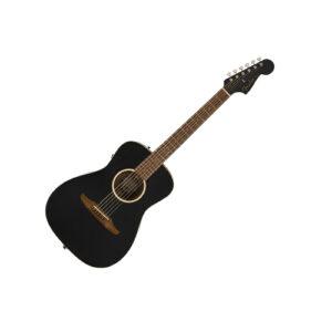 Electro-Acoustic